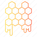 autumn, bee, candy, food, honey, honeycomb, sweet icon