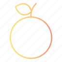 fresh, fruit, healthy, orange icon