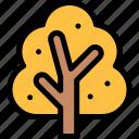 autumn, fall, season, tree, weather icon