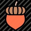 acorn, autumn, fall, season, weather icon