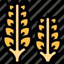 autumn, fall, nature, season, weather, wheat icon