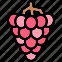 autumn, fall, grapes, nature, season, weather icon