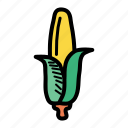 american, corn, food, grain, maize, staple, sweet icon