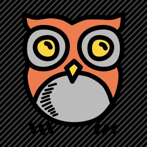 Bird, halloween, horror, night, nocturnal, omen, owl icon - Download on Iconfinder