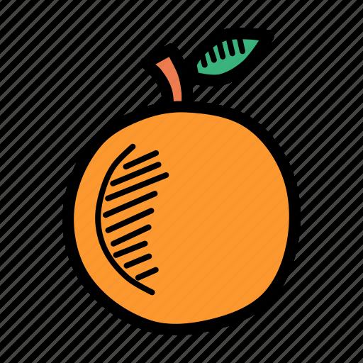 Autumn, food, fruit, healthy, orange, peach, spring icon - Download on Iconfinder