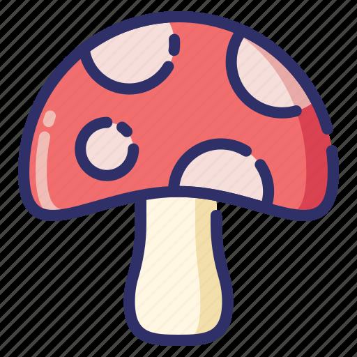 autumn, fall, mushroom, nature, season, vegetable icon