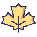 autumn, fall, leaf, maple, nature, plant icon