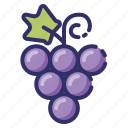 autumn, berry, fruit, grape, leaf, nature, vines icon