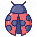autumn, ladybug, insect, bug, animal icon