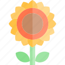 autumn, fall, flower, season, sun, weather icon