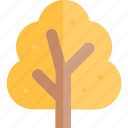 autumn, fall, season, tree, weather icon