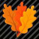autumn, leaf, nature, oak icon