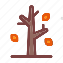 autumn, fall, fir, pine, spruce, tree, wood icon