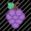 autumn, berry, fall, food, fruit, grape icon