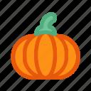 autumn, fall, farm, food, harvest, pumpkin, vegetable