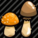 diet, fungi, mushroom, nutrition, vegan