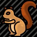 animal, avatar, squirrel, wildlife, zoo icon