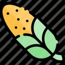 autumn, corn, fall, nature, season, weather icon