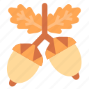 acorn, autumm, food, nature, oak