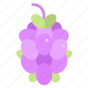 berries, berry, bouquet, fruit, grape