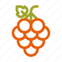 autumn, berry, fall, food, fruit, grape icon