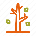 autumn, fall, leaf, leave, plant, season, tree icon