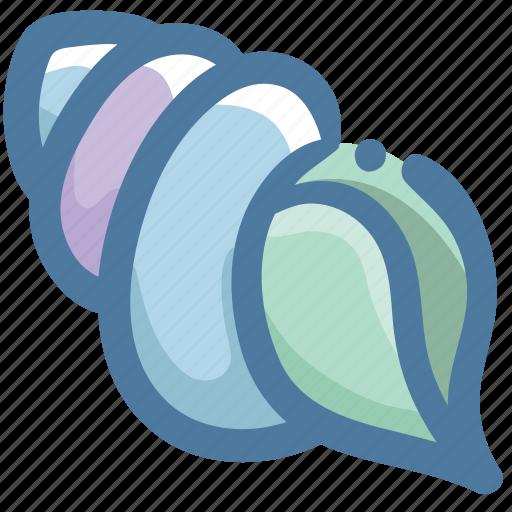 doodle, ocean, sea, shell icon