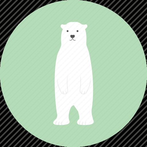 bear, child, doll, kid, rag doll, toy icon