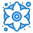 colorful, decorative, flower, flowers, generic icon