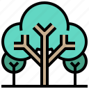 ecology, environment, forest, landscape, nature, trees, woods icon