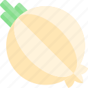 barbecue, bbq, food, onion, party, picnic icon
