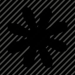 flower, snow, spark, star icon