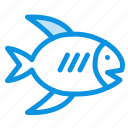 beach, coast, fish, sea icon
