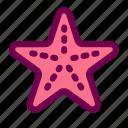 animal, ocean, sea, starfish