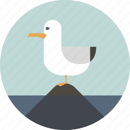bird, cormorant, ocean, sea, seagull, summer, water icon