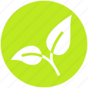 bio, eco, green, leaf, nature, organic, plant icon