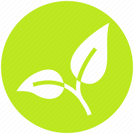 Bio, eco, green, leaf, nature, organic, plant icon - Download on Iconfinder