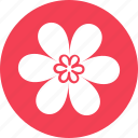 beauty, bloom, blossom, flower, nature icon