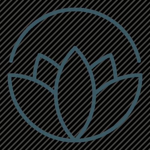 Bloom, blossom, flower, harmony, lotus, yoga icon - Download on Iconfinder