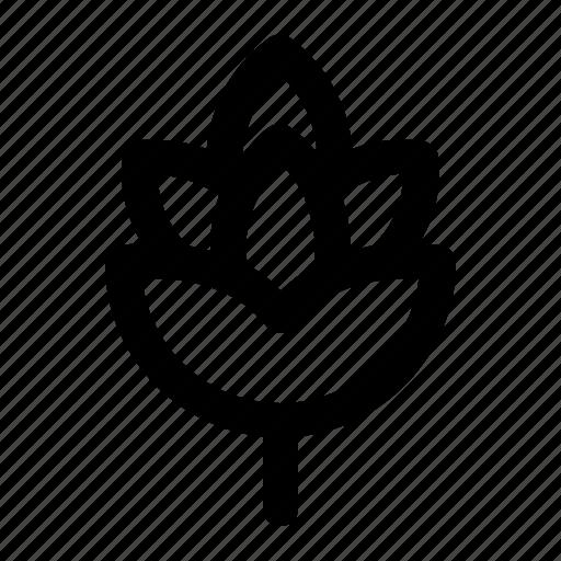 Beer, hop, hop plant, patrick day, plant, saint patrickst icon - Download on Iconfinder