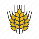 agriculture, bread, brewing, cereal, grain, malt, wheat icon