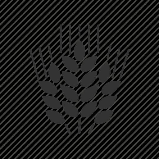 agriculture, bread, brewing, cereal, grain, malt, wheat icon