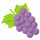 beauty berry, berries, berry, berry fruit, hydrangea icon