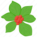 berries, berry fruit, japanese wineberry, rubus phoenicolasius, wineberries icon