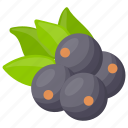 berries, berry, berry fruit, blueberry, blueberry fruit icon