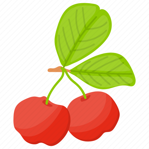 berries, berry fruit, currant fruit, gooseberry fruit, red gooseberry icon