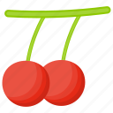 berries, berry fruit, cherries, holly berry, red berries icon