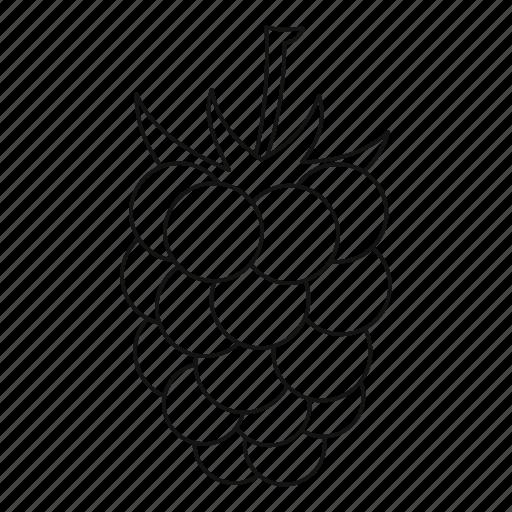 Iconfinder - 'Berries - Outline' by Ivan Ryabokon