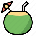 coconut, fruit, juice, nature, water icon