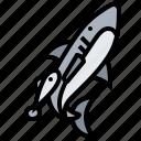 dependent, fish, partnership, shark, symbiosis icon